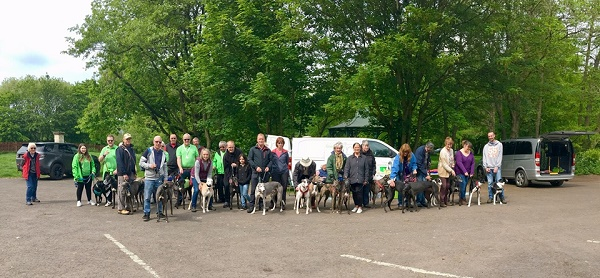 Branch walk at Baggeridge Country Park. 31 hounds and their families enjoyed a walk in the spring sunshine. The raffle raised £114.30. Kennel hounds James and Shane behaved impeccably.