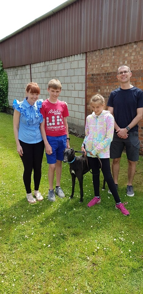 Sugar joined the Cartwright family, she has kept her kennel name as they thought as she is so sweet it suited her.