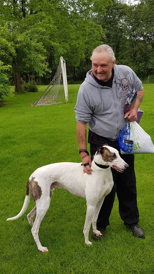 Keith and Donna came to the Kennels and soon Conrad was in the car for his journey to his new home as their new greyhound