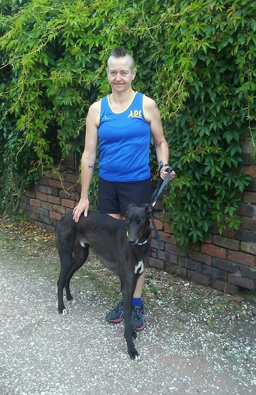 Our lovely volunteer Michelle chose handsome black hound Cody to join her houndie family. Now called William he was soon in the car and on his way home