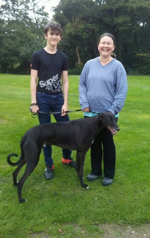 There was much joy at the kennels as our longest stayer Spencer finally found his forever home with Leanne and her family. Good luck lad!