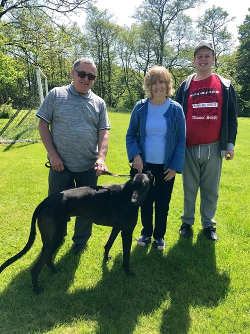 Ace kept his name as he left the sunny kennels to join the Jeffries family and their little dog