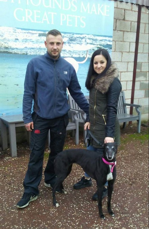 Pretty little Bridget kept her name as she left the kennels for her new life with the Dymon family and their collie