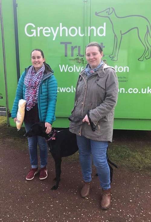 Pretty little Cola changed her name to Bella as she left the kennels for her new life with a very excited Samantha