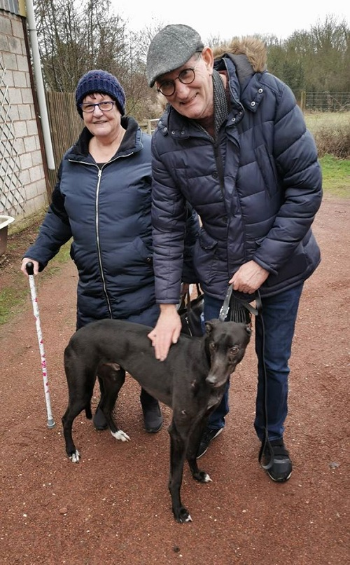 Cupid changed his name to Woody where he left the kennels to join the Wood family