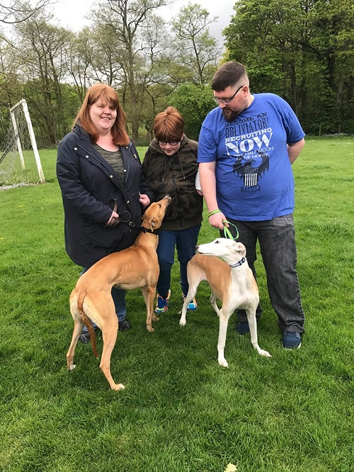Pretty little fawn girl Lois changed her name to Penny as she left us to live with the Foyle family and their lurcher Sandy