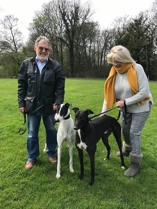 The Gibb family came to the kennels looking for two new companions after losing their previous hounds. Lucky lads Spot and Diesel were chosen, and after a quick wash n go, they left us for their forever home together